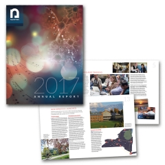 Annual Report for NYSERNet 2017